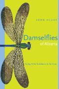 Damselflies of Alberta: Flying Neontoothpicks in the Grass
