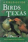 W. L. Moody, Jr., Natural History #0014: Birds of Texas