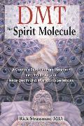 DMT: The Spirit Molecule: A Doctor's Revolutionary Research Into the Biology of Near-Death and Mystical Experiences Cover