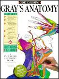 Start Exploring Grays Anatomy