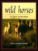 Wild Horses A Spirit Unbroken