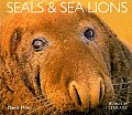 Seals & Sea Lions (Worldlife Library)