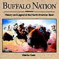 Buffalo Nation History & Legend Of The
