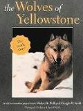 Wolves Of Yellowstone The Inside Story