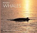 Minke Whales (Worldlife Library)
