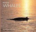 Minke Whales (Worldlife Library)