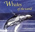 Whales of the World (Worldlife Discovery Guides)