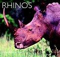 Rhinos: Natural History & Conservation (Worldlife Library)