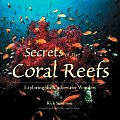 Secrets of the Coral Reefs: Exploring the Underwater Wonders Cover