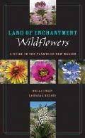 Land of Enchantment Wildflowers: A Guide to the Plants of New Mexico (Grover E. Murray Studies in the American Southwest)