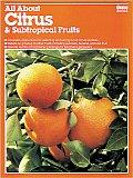 All About Citrus & Subtropical Fruits
