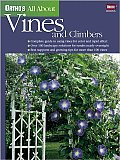 All About Vines & Climbers