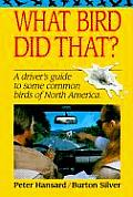 What Bird Did That A Drivers Guide to Some Common Birds of North America