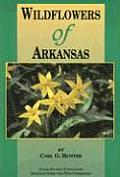 Wildflowers of Arkansas