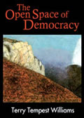 Open Space Of Democracy