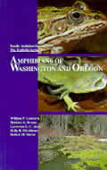 Amphibians Of Washington & Oregon