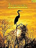 Everglades: The Story Behind the Scenery