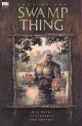 Saga Of The Swamp Thing Swamp Thing 1