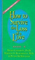 How To Survive the Loss of a Love Cover