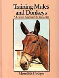 Training Mules & Donkeys A Logical Appro