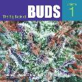 Big Book of Buds Marijuana Varieties from the Worlds Great Seed Breeders