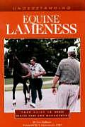 Understanding Equine Lameness Your Guide To Horse