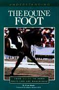 Understanding Equine Foot Your Guide To Ho