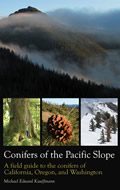 Conifers of Pacific Slope