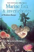 Marine Fish & Invertebrates of Northern Europe