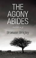 Agony Abides: an Anthology