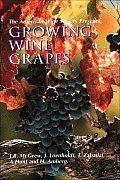 American Wine Society Presents Growing Wine Grapes