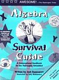 Algebra Survival Guide : a Conversational Guide for the Thoroughly Befuddled (00 Edition)