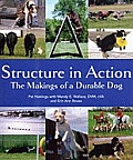 Structure in Action