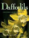 Daffodils For American Gardens