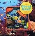 The Coral Reef Tunnel Book: Take a Peek Under the Sea! (Take a Peek)