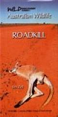 Australian Wildlife - Roadkill