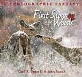 First Snow in the Woods A Photographic Fantasy