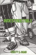 Indestructible: Fifteen Chapters on Being Fifteen