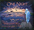 One Night in the Everglades