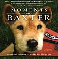 Moments with Baxter Comfort & Love from the Worlds Best Therapy Dog