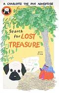 Search for Lost Treasure