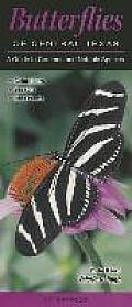 Butterflies of Central Texas: A Guide to Common & Notable Species