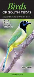 Birds of South Texas Incl. the Lower Rio Grande Valley: A Guide to Common & Notable Species