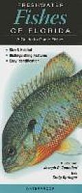 Freshwater Fishes of Florida: A Guide to Game Fishes