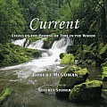 Current: Essays on the Passing of Time in the Woods