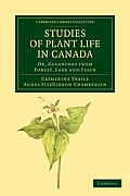 Studies of Plant Life in Canada: Or, Gleanings from Forest, Lake and Plain
