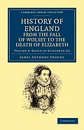 History of England from the Fall of Wolsey to the Death of Elizabeth - Volume 8