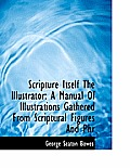Scripture Itself the Illustrator: A Manual of Illustrations Gathered from Scriptural Figures and Phr