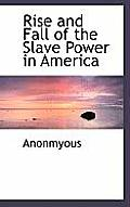 Rise and Fall of the Slave Power in America