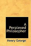 A Perplexed Philosopher